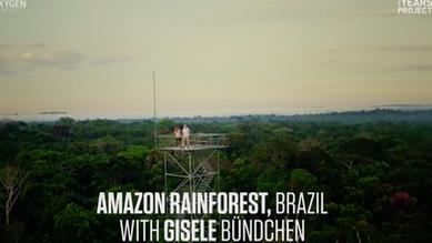 Gisele Bündchen: Deforestation in Brazil
