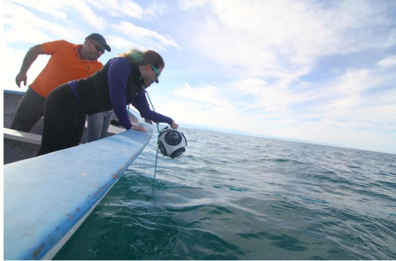 Cinco tecnologías para cambiar el océano