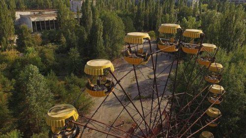La naturaleza se recupera en Chernóbil