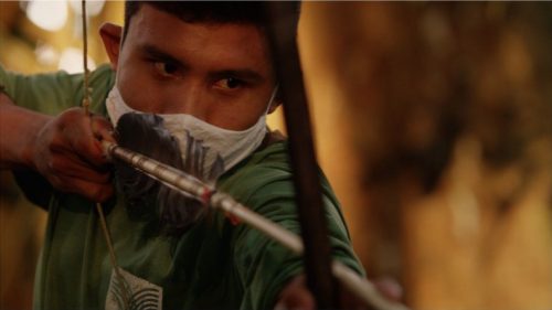 Venta ilegal de la Amazonía por facebook