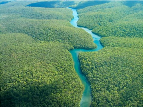 La selva amazónica ya no puede compensar el calentamiento de la atmósfera