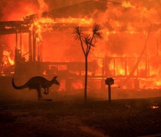 En un país que se incendia se levantan voces pro medioambiente