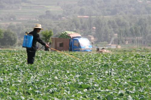 Te Explicamos lo que Debes Saber Acerca de los Agroquímicos