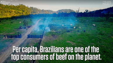 Gisele Bündchen: Meat Consumption in Brazil