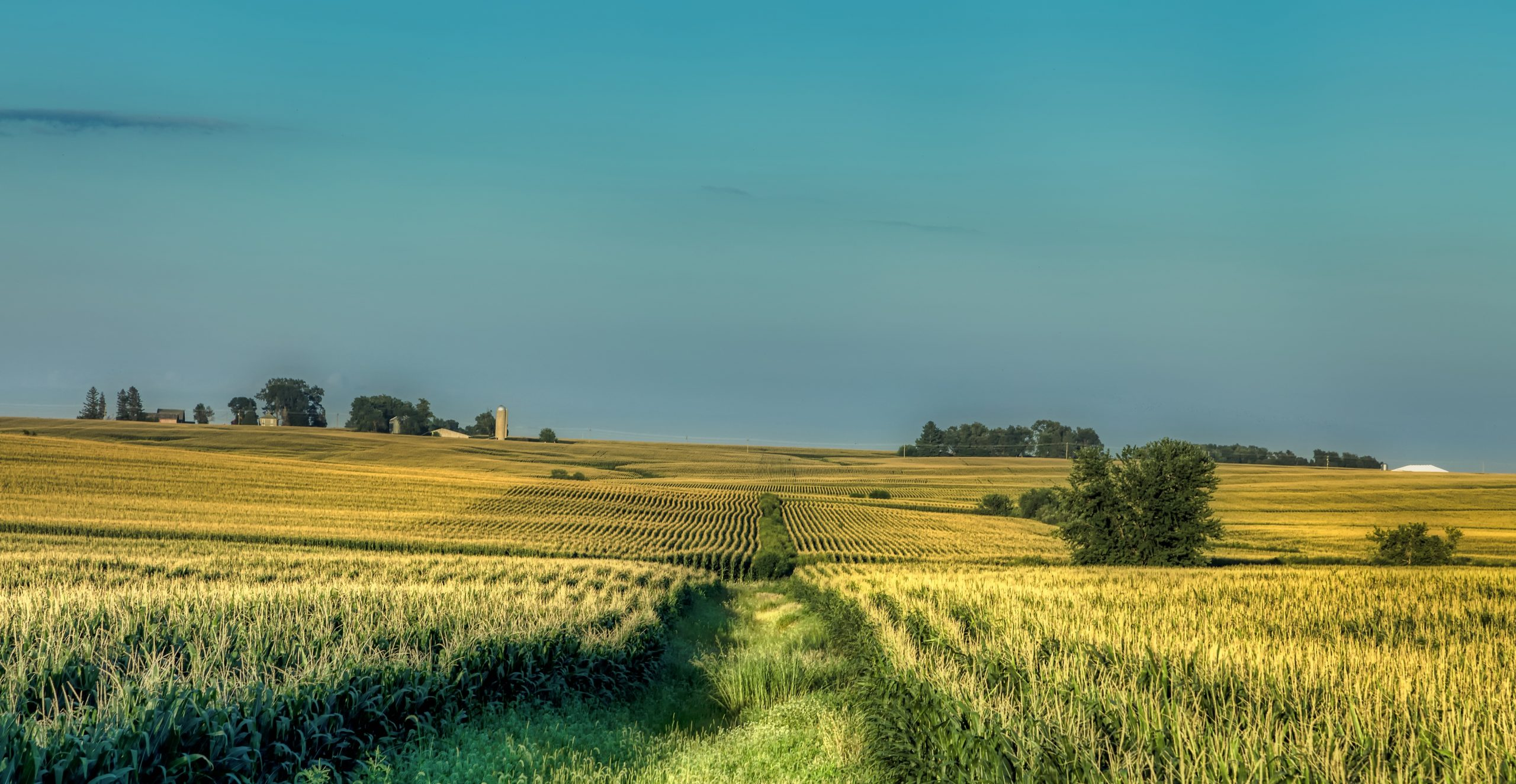 How Science is Building the Case for More Sustainable Farming